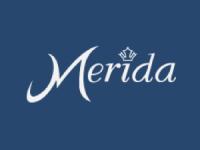 Merida Clinic logo